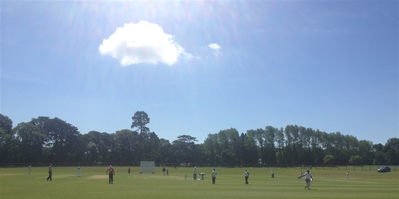 Ranji Trophy Ireland, Cricket Competition