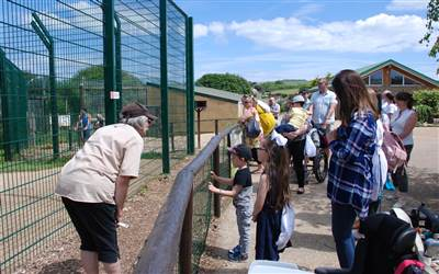 Chestnut Tree House enjoy Isle of Wight Zoo
