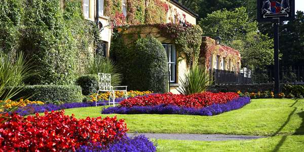 Advance Purchase Bed & Breakfast Rate