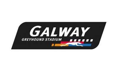 Galway Greyhound