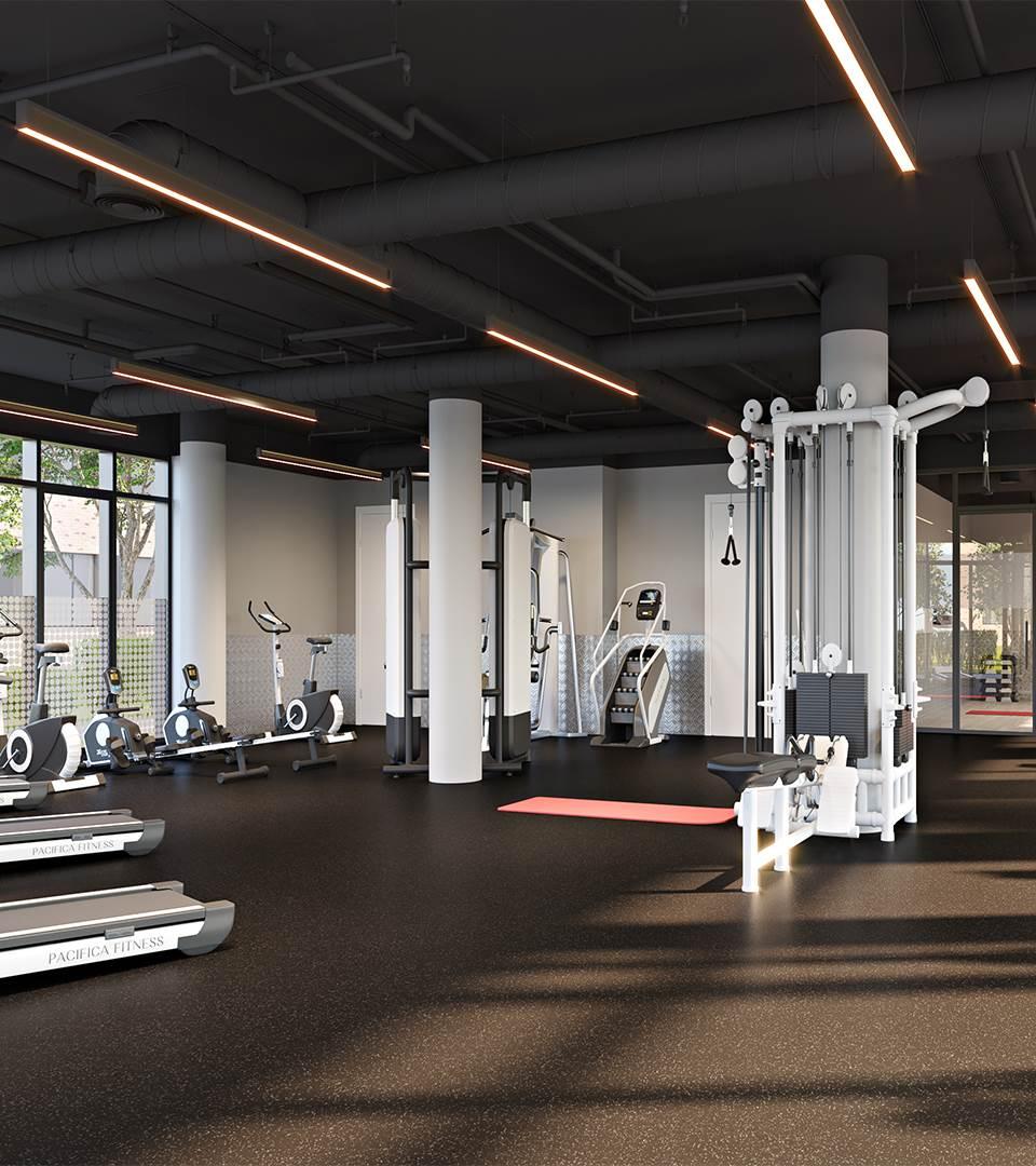 Gym and Aerobics Studio