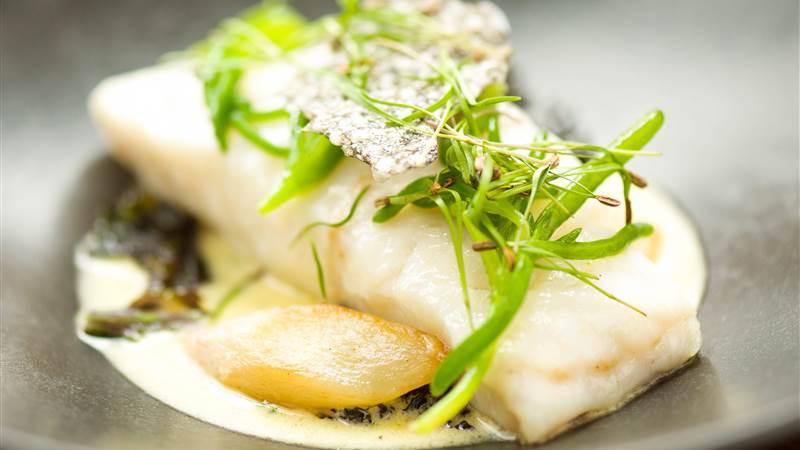 Salt water cod