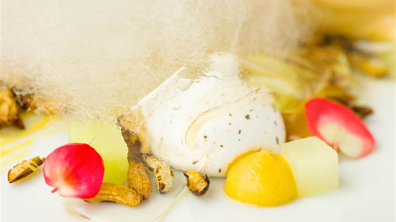 butterscotch and soy ice cream