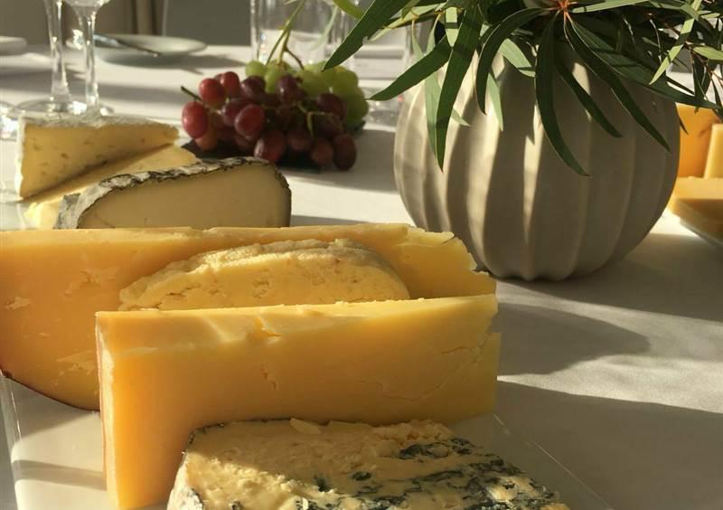 cheese close up 4.5