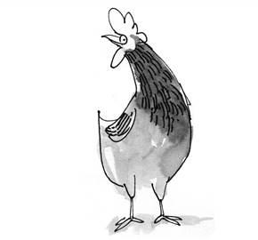 Chicken landscape 1