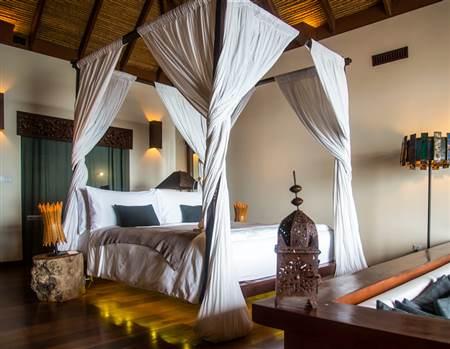 Jungle one bedroom
