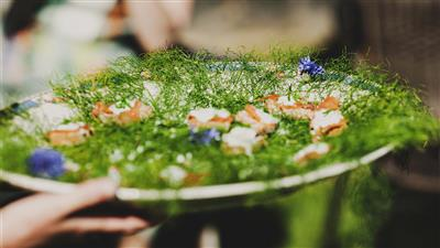 Weddings - Canapes