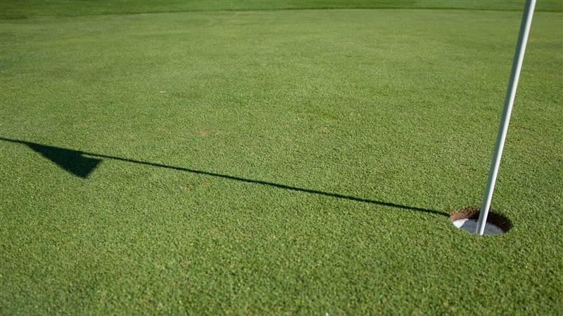 Beaverstown Golf